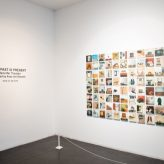 Installation shot at Wexford Arts Centre of Jennifer Trouton's Looking At The Overlooked exhibition